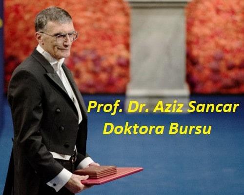 Doktora Bursu