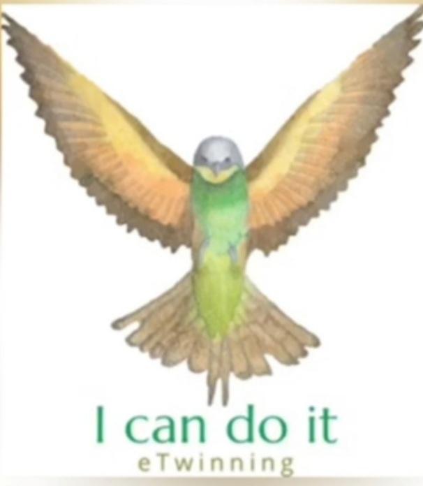 Yapabilirim - I can do it etwinning projesi