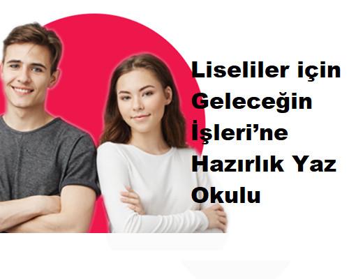 Liseliler