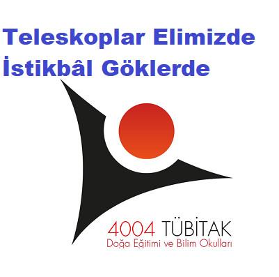 TÜBİTAK 4004